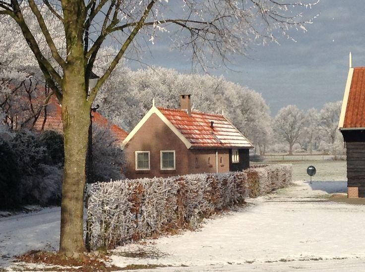 Het Bakhuisje in de winter, januari 2017