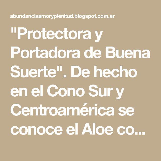 """""""Protectora y Portadora de Buena Suerte"""". De hecho en el Cono Sur y Centroamérica se conoce el Aloe como una planta"""