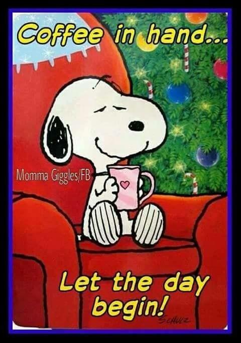 the geetered is awake GOOD MORNING Geeterheads #coffeequotes