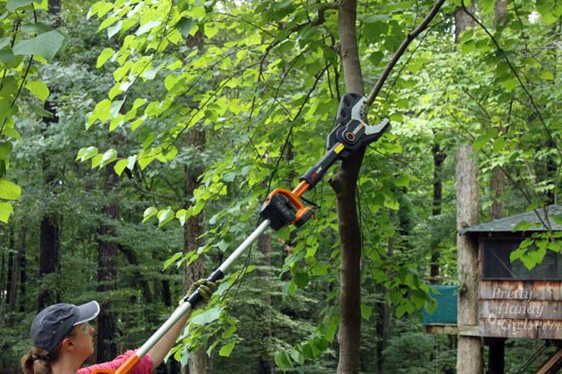 WORX JawSaw Review | What's safer than a chainsaw and can still cut through a small tree with no hesitation?