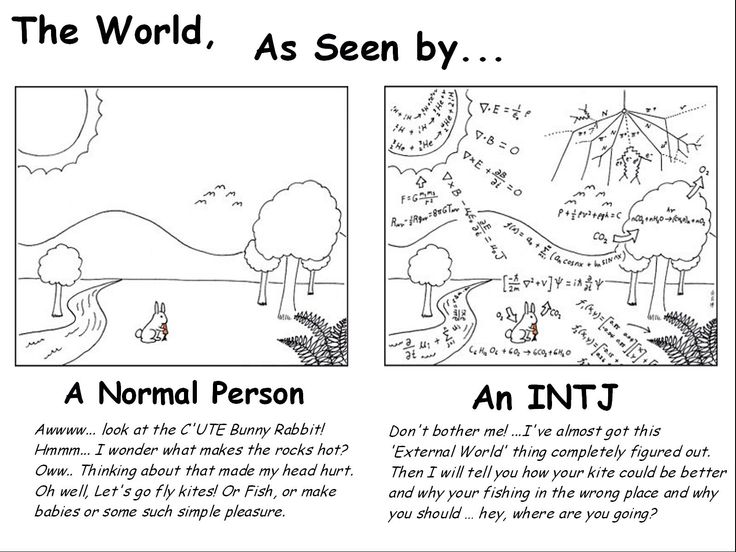 intj relationship and dating guide