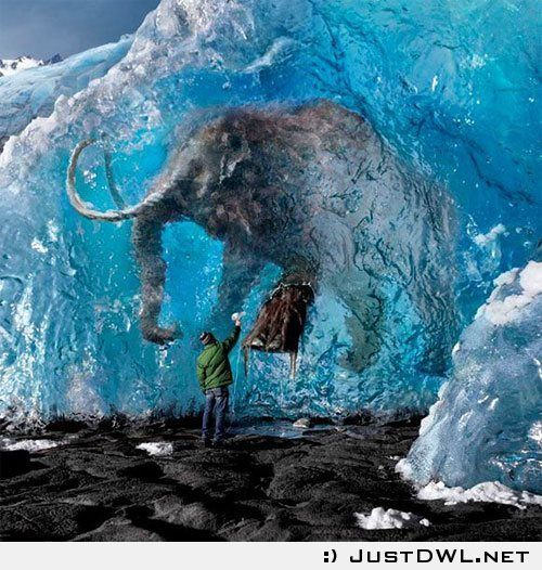 Amazing Pictures: In Ice Condition: Amazingly Preserved Woolly Mammoth Found