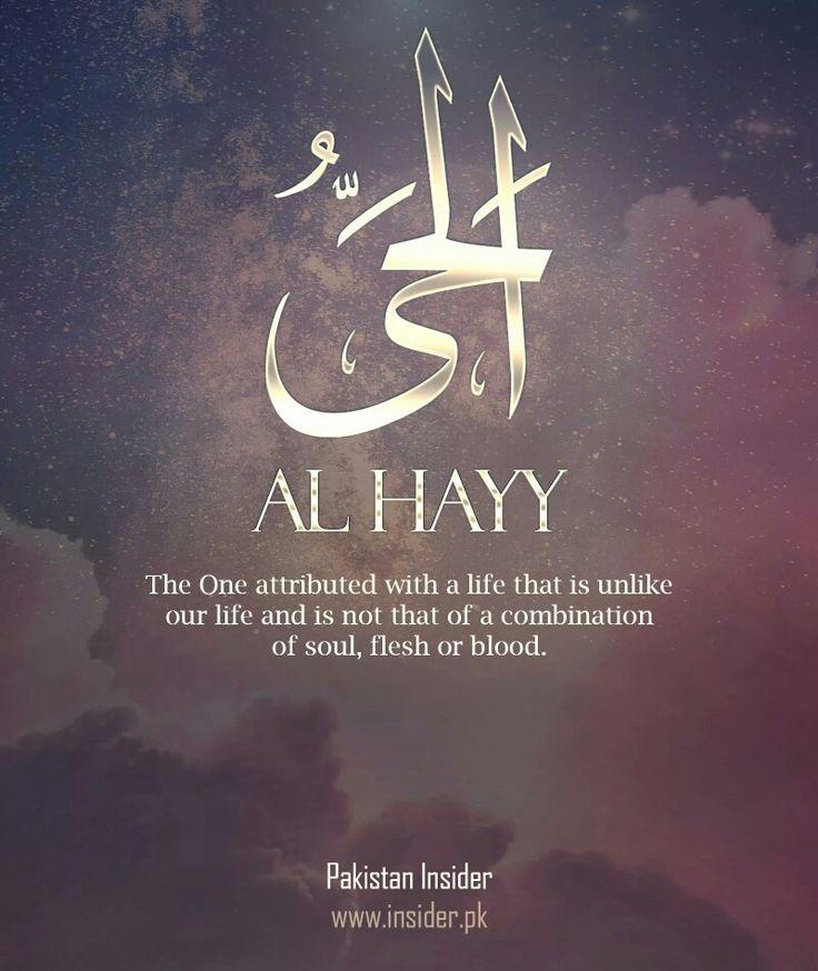 Al Hayy