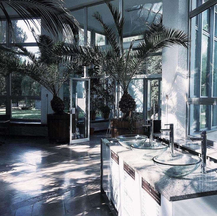 [pytanie] Znacie jakieś super zielone miejsca w Polsce? Jakies piękne green spoty? Kawiarnie palmiarnie botaniczne sklepy lub cos innego co nawet nie przyszło mi do głowy?  Powodowana dzika chęcią zobaczenia palmiarni w Nałęczowie zorganizowałam nam kiedyś wycieczkę do Lublina więc teraz - kto wie? ____________ #urbanjungle #urbanjunglebloggers #palms #palmy #palmiarnia #nałęczów #naleczow #interiordesign #interiorinspo #interiorforall #interiorrewilding #green #doorsandwindowsoftheworld…