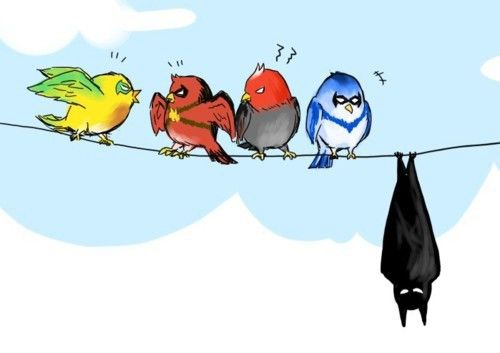 Bat and robins.
