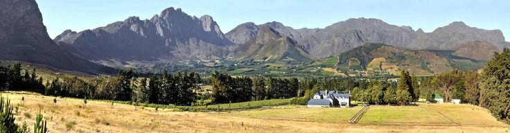 Chamonix Wine Farm Franschhoek | Vineyards Franschhoek