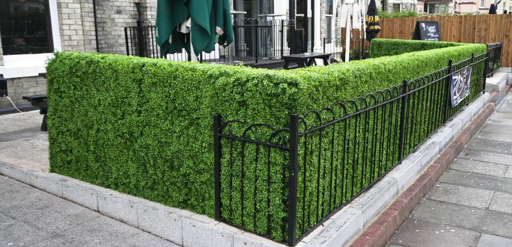 Artificial Topiary Hedges supplied for a Patio Cafe & Bar area