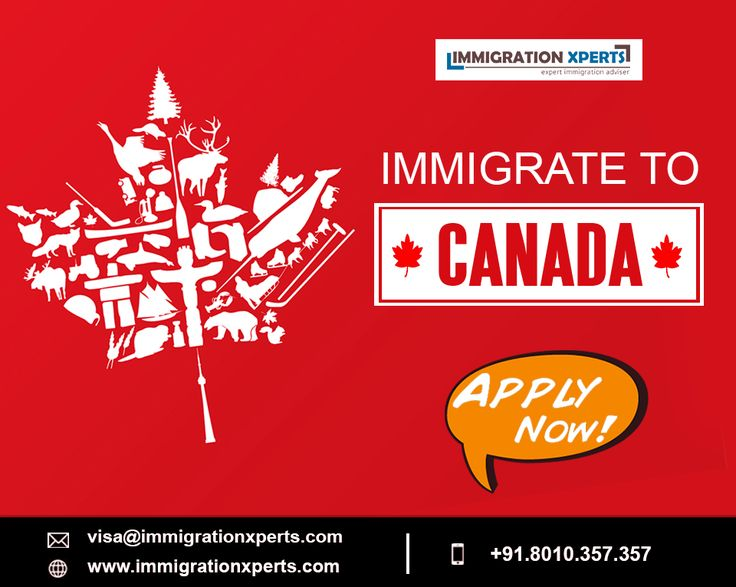 Free Profile Assessment of Canada Immigration Candidates  Get your profiles assessed and assisted for legitimate requirements to qualify for Canada Visa - www.immigrationxperts.com #canadaimmigration #canadavisa #canada #workpermit