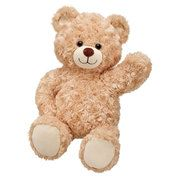 16 in. Happy Hugs Teddy - Got This picture from Build a Bear website http://www.buildabear.com. for testing purposes only