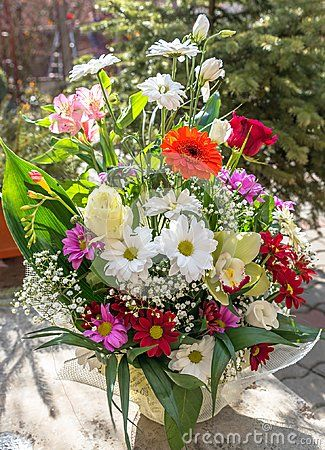 Pretty colorful flower bouquet in sunshine