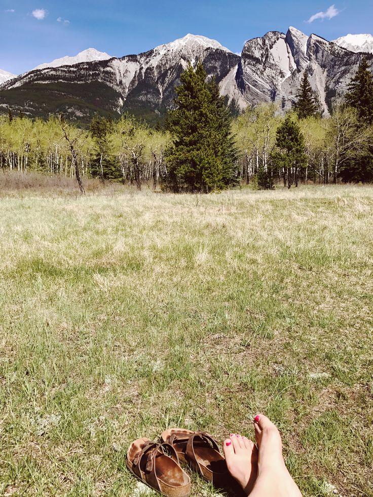 Summer time in Jasper National Park, Alberta - Canada
