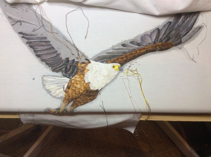 African Fish Eagle head and body completed