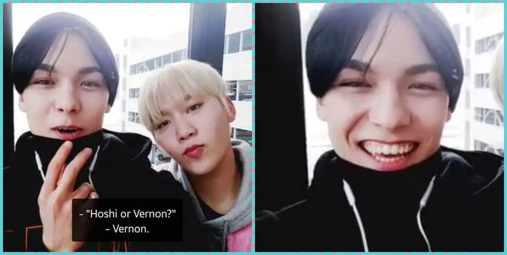 🐶¿Hoshi o Vernon?