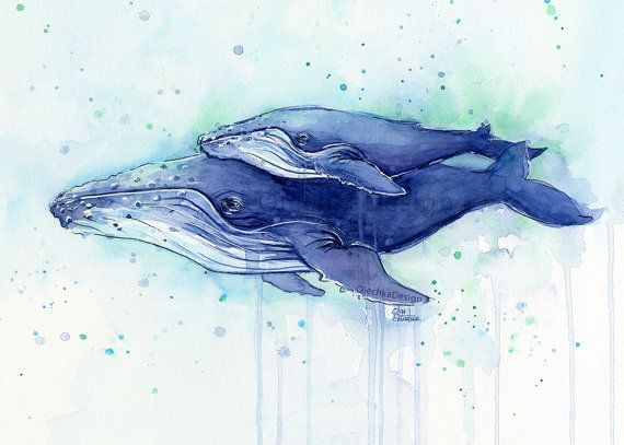 Humpback Whale Mom and Baby Watercolor Print by OlechkaDesign