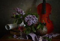 photo : натюрморт про в... | photographer : inna korobova