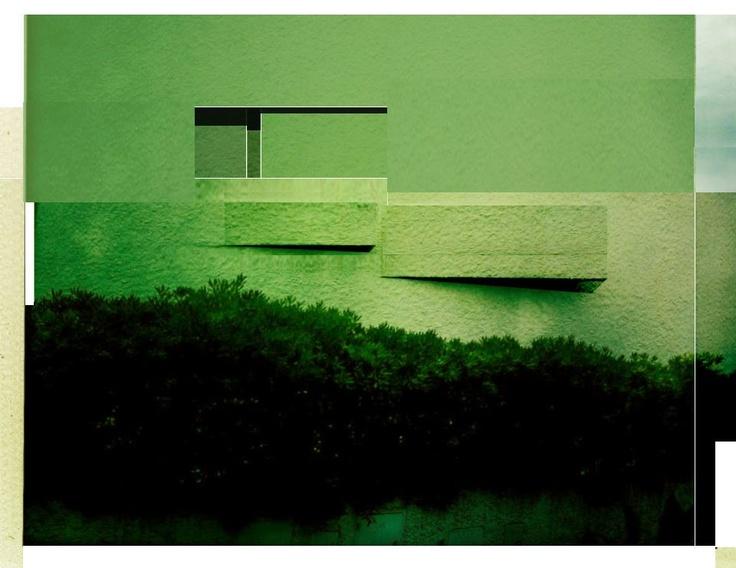 Beniamino Servino sulla foto di Nicola Auciello. Sul verde assorbente.