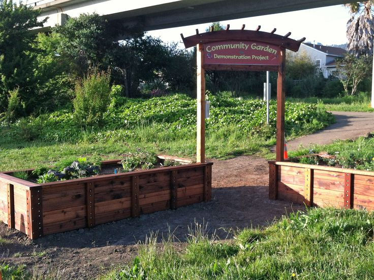 52 Best Gardening Images On Pinterest Raised Beds