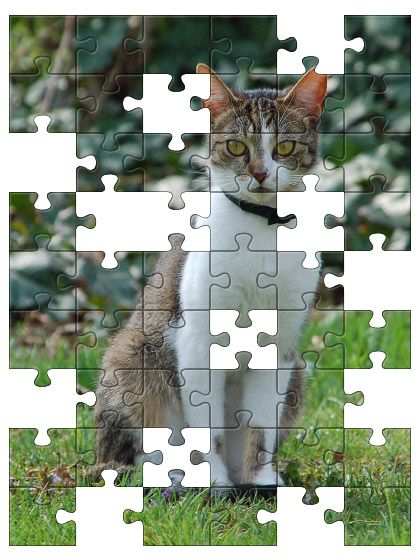 Free Jigsaw Puzzle Online - DOMESTIC CAT  #Game #JigsawPuzzle #Puzzle #freegame