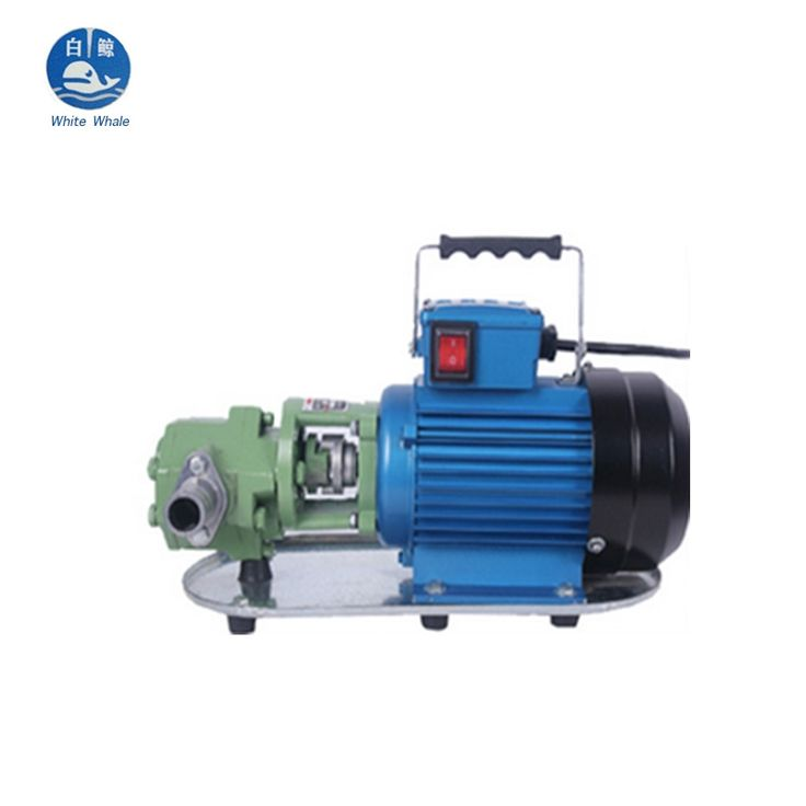 117.00$  Watch now - http://alij9e.worldwells.pw/go.php?t=32461649840 - Wholesale China Market Price Cast Iron Electric Gear Pump for Fuel Oil 550W 220V/50HZ 117.00$