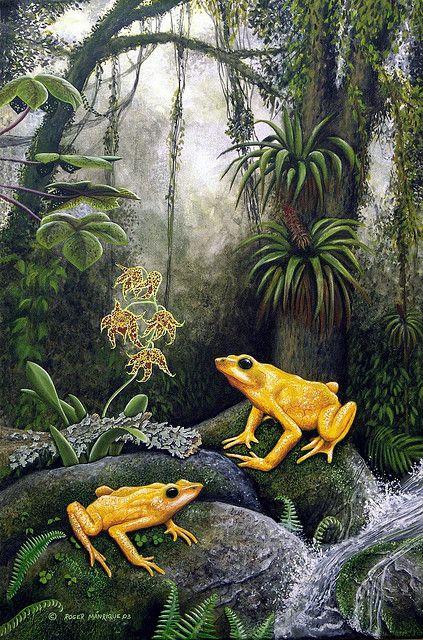 La Carbonera Golden Frogs - Art by Roger Manrique - Photo by César Barrio | Flickr - Photo Sharing!