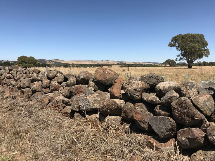 Dry Stone Wall, Stonehaven, Victoria, Australia