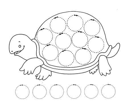 .Kreise - Schildkröte