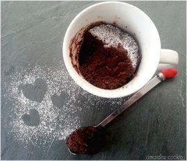 Mugcake façon moelleux au chocolat : la recette facile