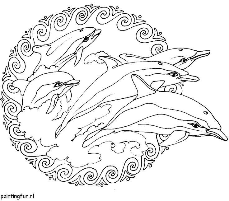 kleurplaten van dolfijnen zoeken