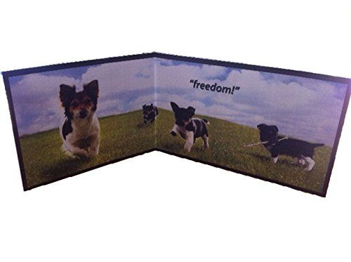 Best Dog Piddle Pads
