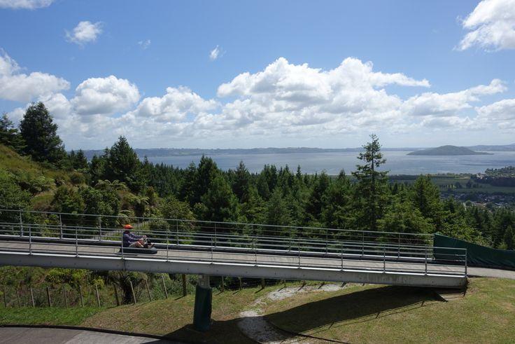 Luge ride at Rotorua
