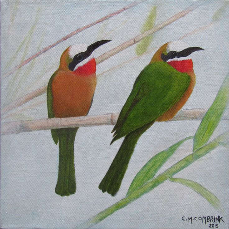 Red-Throated Bee-Eater Oil Painting - Christiaan Combrink 2015
