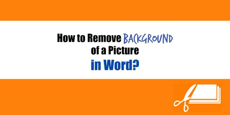 How to Remove Background of a Picture in Word?