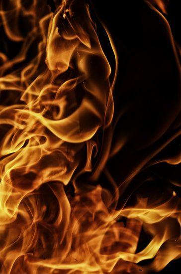 Feuer und Flammen von Tanja Riedel