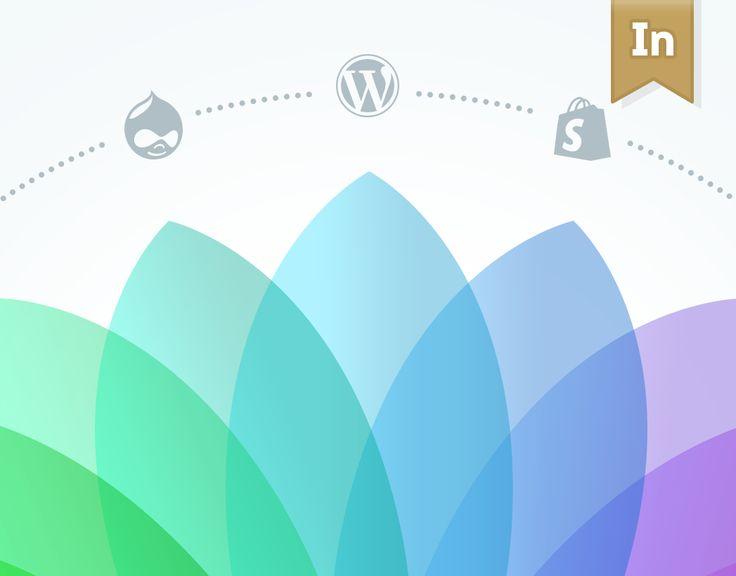 """다음 @Behance 프로젝트 확인: """"w3-markup.com"""" https://www.behance.net/gallery/29886335/w3-markupcom"""