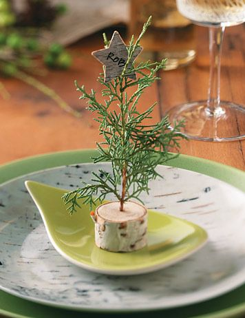 decorate the place and mark the Christmas table.