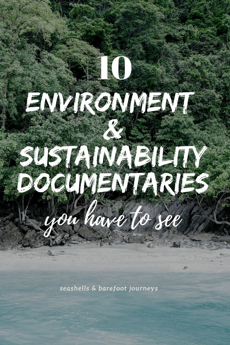 If you're on the lookout for some educational and rather interesting documentaries for your cosy evenings, I got you covered. I have written my 10 top environmental / sustainability documentaries, which I promise will have you questioning a lot of things. At least it did for me. 1. Cowspiracy- it is not without reason I …