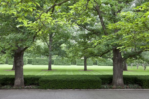 17 best images about modern american landscape design on for American landscape architects
