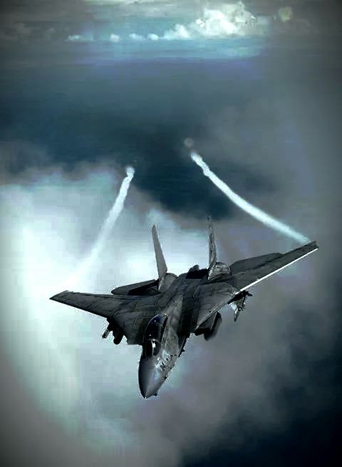 F-14  TOMCAT, the airframe was WAYYYY ahead of its engines its entire lifetime! Yes, even in the F-14D.Visible Ethnic Minorities (VEM) master this and make your own jet fighter!