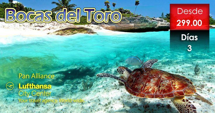 Promociones de Pan Alliance LCC: Bocas del Toro, precios de tentación