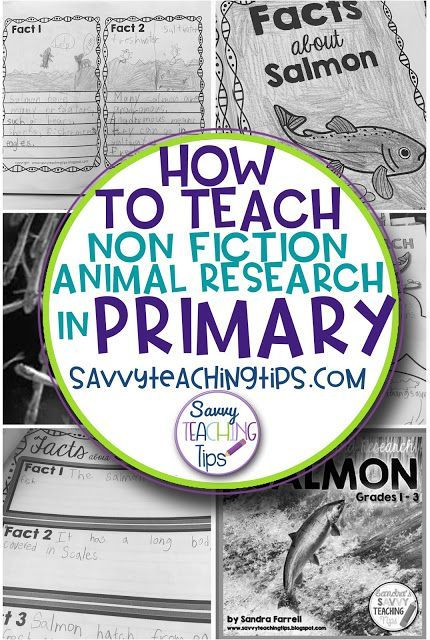 How to Teach Non-Fiction Animal Research in Primary Classrooms