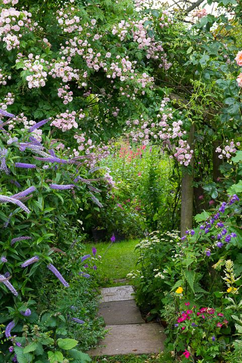 Create winding pathways and massed plantings to add interest to your garden. A straight, bare garden is boring !