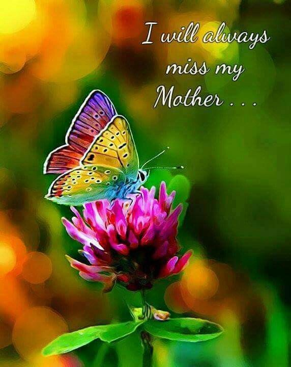 Grieving for mom