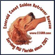 Emerald Coast Golden Retriever Rescue Northwest Florida -
