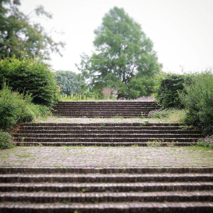 De trappen van #ParkdeGagel #Overvecht, met daarachter verscholen een prachtige bloementuin. Perfect plekje om in alle rust even te zitten.