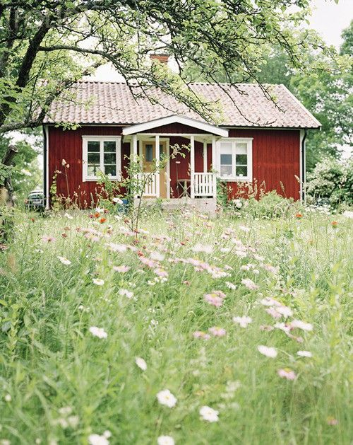 Red cottage nestled in wild flowers. Not sure if this is Danish but it certainly looks Scandinavian.