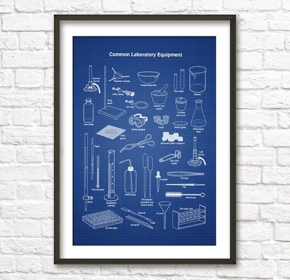 Laboratory blueprint picture in many for Blueprint size prints