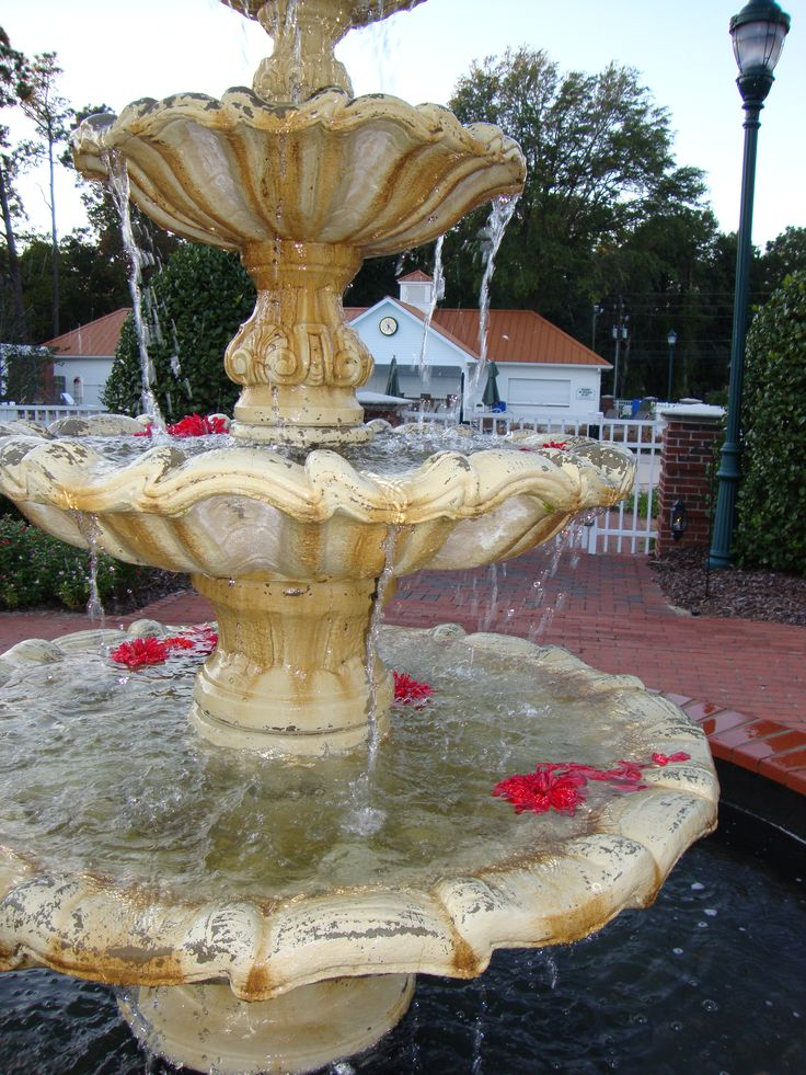 Rose Petals for West Lawn Fountain
