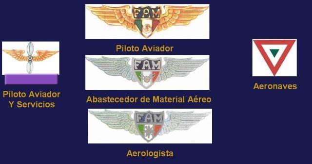 FUERZAS ARMADAS DE MÉXICO / ARMED FORCES OF MÉXICO - FUERZA AÉREA MEXICANA - MEXICAN AIR FORCE