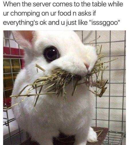30 Funny Daily Memes