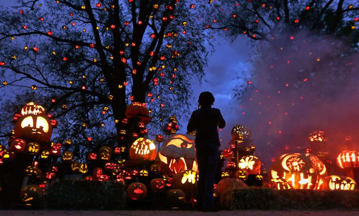 """""""A girl stops to look at hundreds of jack o' lanterns at the Roger Williams Park Zoo in Providence, Rhode Island, on October 8, 2012. Around 5,000 carved pumpkins are on display for this year's Jack-o'-lantern Spectacular, one of the nation's largest jack-o'-lantern shows."""" Fun!"""